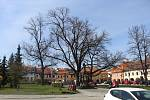Centrum Netolic. Ilustrační foto.