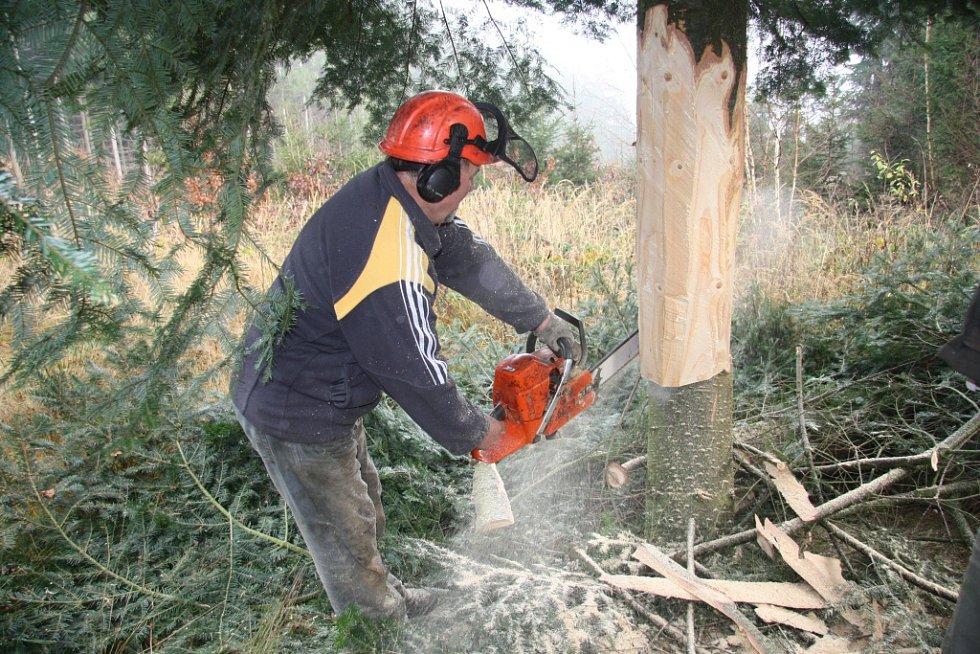 Do připravené šachty v centru Prachatic je potřeba kmen vánočního stromu vždy dopředu upravit podle požadovaného průměru.