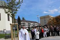 Dvě nové lípy vysvětili Volarští na novém náměstí v den státního svátku sv. Václava.