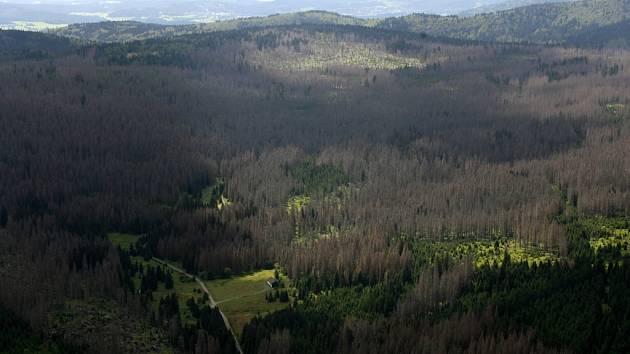 Národní park Šumava čeká na to, jakou podobu bude mít chystaný zákon. Zda o něm politici rozhodnou zodpovědně a s nadhledem, nebo zabřednou do letitých vlekoucích se sporů a názorových přestřelek, je jen na nich.