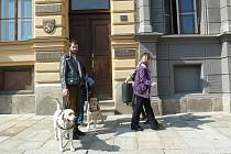 Vodící pes pomůže přes silnice a najde i místo v autobuse.