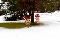 První sníh začínající zimní sezony 2020 v Horské Kvildě.