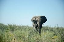 Cíl v Kapském městě má Tadeáš Šima z Prachatic téměř za rohem. Teď jede Namibií.