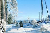 Na Šumavě za poslední dva dny připadlo místy i čtyřicet centimetrů sněhu.