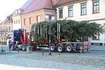 Vánoční smrk dorazil na prachatické Velké náměstí ve středu 18. listopadu dopoledne.