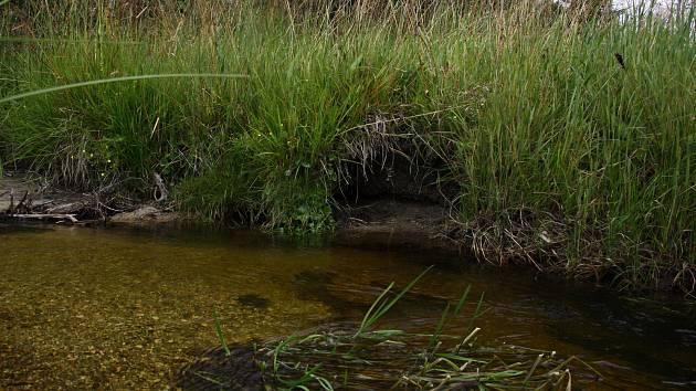 Revitalizovaný potok Hučina.