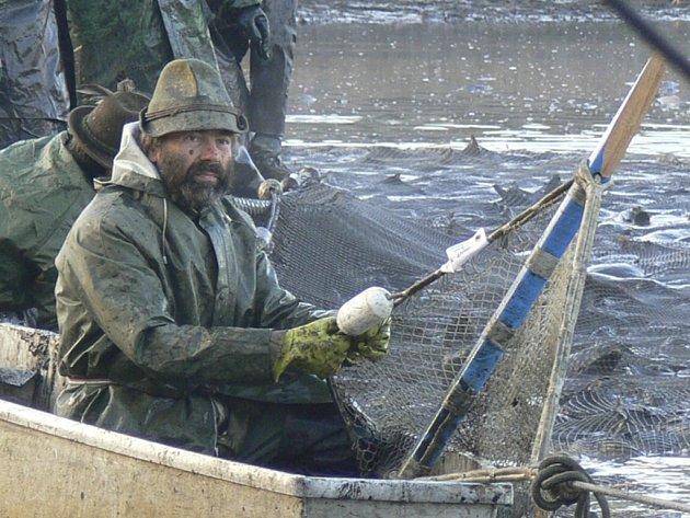 PLNÉ SÍTĚ. První zátah rybářů na Podroužku naplnil síť doslova k prasknutí. Stálo opravdu hodně námahy, než mohli rybáři začít házet ryby do kádí.