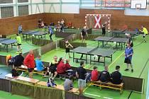 V prachatické sportovní hale se za účasti devadesáti hráčů konal 9. ročník Jarního poháru H.B. mostové jeřáby cupu ve stolním tenise.