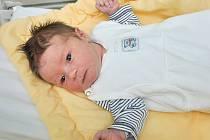 VOJTÍŠEK ŠVEC, VIMPERK. Narodil se 14. ledna ve 12 hodin a 29 minut ve strakonické porodnici. Vážil 3680 gramů. Má brášku Adámka (3 roky). Rodiče: Žaneta a Jiří.