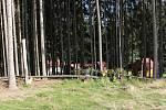 Děti tráví v Nové peci pravý Pohoďák.