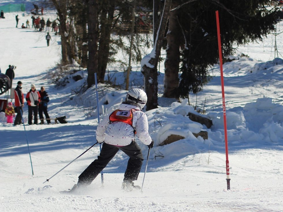 Druhý závod Bázumského poháru neregistrovaných malých lyžařů se jel o víkendu v Českých Žlebech.