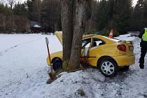 Řidička jedoucí ze Zbytin směrem na Blažejovice dostala při průjezdu zatáčkou smyk a narazila se svým vozidlem do stromu.