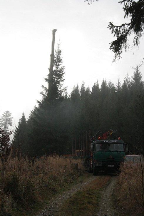 Prachatické Velké náměstí bude o letošních Vánocích zdobit zhruba šestnáctimetrová jedle z lesního porostu pod Libínem. Včera jej dopravili do centra, dnes by se měl doplnit o vánoční osvětlení.