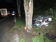 Úterní dopravní nehoda u Čkyně. Foto: Policie ČR
