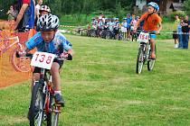 Závodníci v patnácti kategoriích se postavili na trať  Jihočeského poháru MTB 09, jehož 9. kolo připravila obec Buk a to v rozličných délkách od dvanáctistovky až po trať měřící více než dvacet kilometrů.