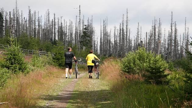 Novela zákona 114 o ochraně přírody a krajiny by měla Národní park Šumava více otevřít turistům.