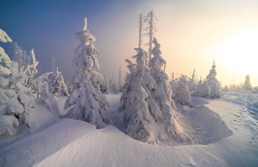 Scenérie jako z Mrazíka mohou obdivovat všichni, kteří se v těchto dnech vydají na Plechý.