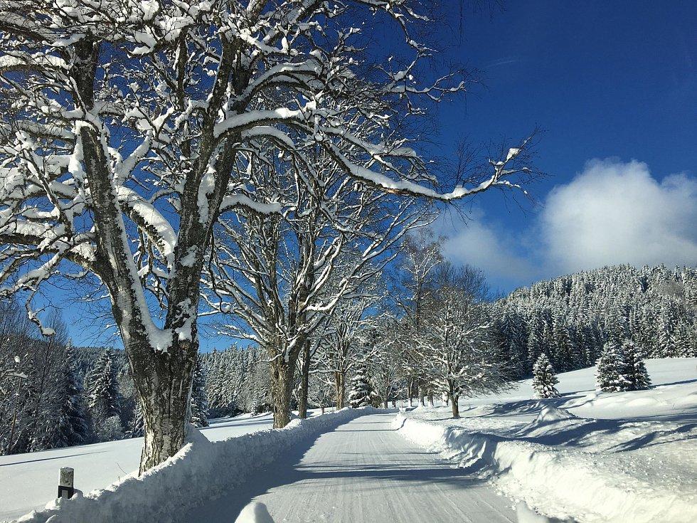 Na jihočeských horách panuje idylické počasí, o víkendu napadlo asi čtvrt metru sněhu. Snímek je z Kvildska.