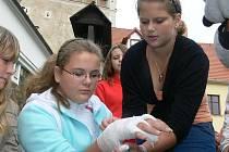 Děti se samy přesvědčily o tom, že o poskytování první pomoci mají lepší znalosti než většina dospělých.