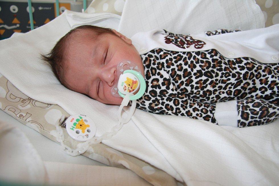 DAVID RAKAŠ, VOLARY. Narodil se v úterý 17. prosince v 5 hodin v prachatické porodnici. Vážil 3110 gramů. Má brášku Martina (3 roky). Rodiče: Marie Cinová a Martina Rakaš.