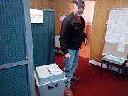 Parlamentní volby v Šumavských Hošticích.