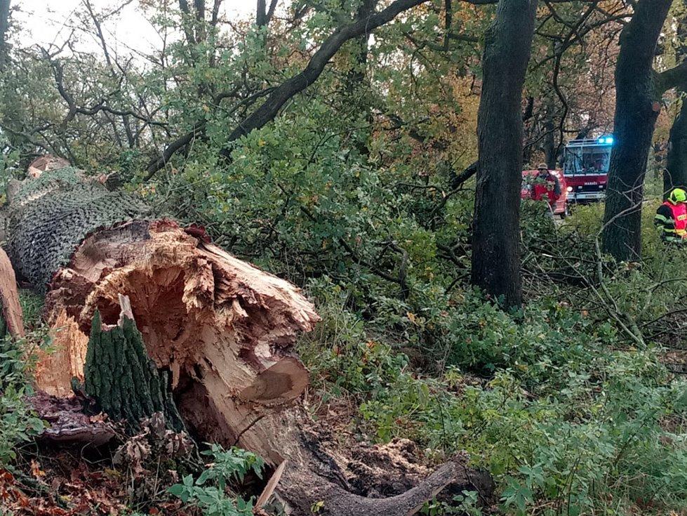 Netoličtí hasiči likvidují následky větru.