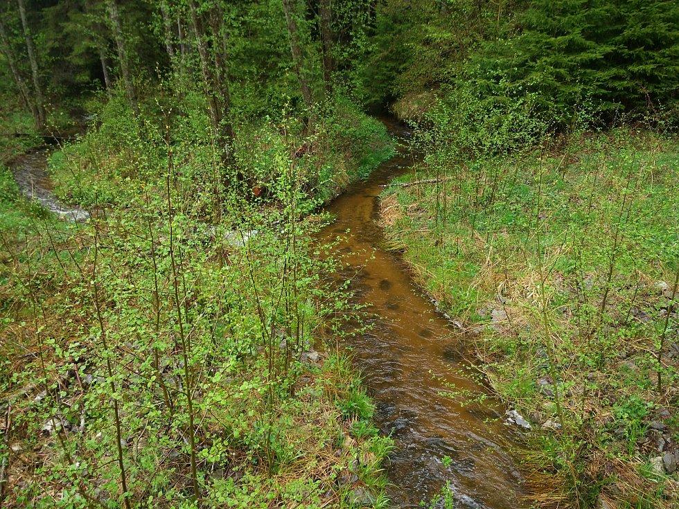 Koryto Křemenného potoka u Volar je plné.