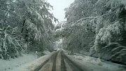 Silnice ze Lhenic do Prachatic. Víc se stojí než jede.