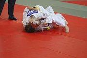 Mladí judisté absolvovali VC Prachatic v rámci mezinárodního projektu Judo & Art.