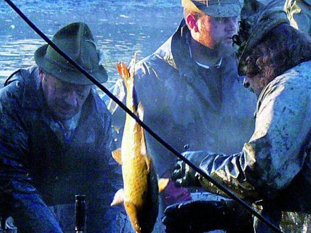 PLNÝ RYBNÍK. V loňském roce se rybářům při výlovu na rybníku Podroužek, který se nachází u Netolic, dařilo. V letošním roce by to na našich rybnících mělo být podobné. Ilustrační foto.