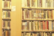 Pokud se knihovna přestěhuje, mohl by být ve městě malý pivovar.  Ilustrační foto.