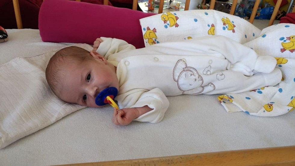 RŮŽENKA ŠTEMBERKOVÁ, PRACHATICE.Narodila se v pátek 7. června v 9 hodin a 31 minut v prachatické porodnici. Vážila 2731 gramů. Má brášku Pepíčka (5 let). Rodiče: Růženka a Josef Štemberkovi.