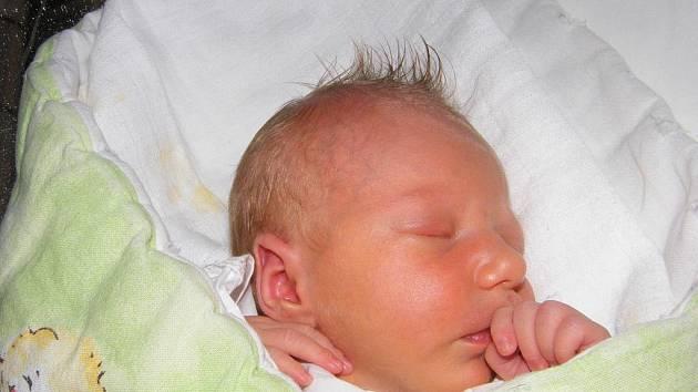 Nikola Pecková, Vodňany, 5. 11. 2009 v 10.00 hodin, 2490 g a 45 cm