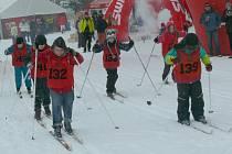 3. ročník Šumavské 30 se poběží 6. a 7. února 2015.