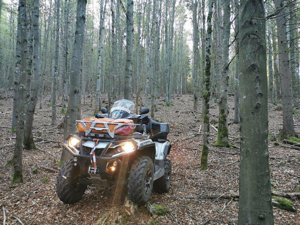 Na Šumavě se rozjela velká pátrací akce po ztracené houbařce.