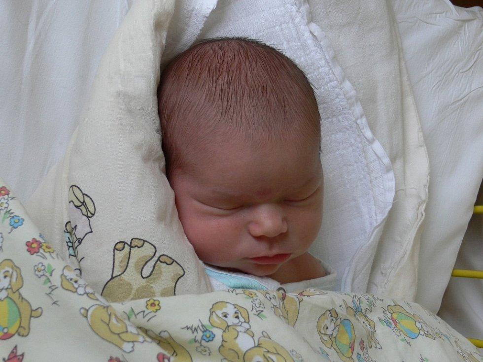Ella Rybecká se narodila v prachatické porodnici  16. listopadu v 08.42 hodin rodičům Věře a Janovi. Vážila 3930 gramů a měřila 50 centimetrů. Ella bude vyrůstat v Českých Budějovicích, kde čekala dvouletá sestřička Adriana.