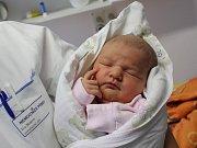 V pátek 5. ledna ve 21 hodin a 38 minut se v písecké porodnici narodila Stella Vlčková. Vážila 3920 gramů a měřila 52 centimetrů. Pro rodiče Elišku Prokopovou a Martina Vlčka, kteří žijí v Prachaticích, je malá Stella prvním miminkem.