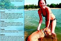 Pár rad, nač by neměli zapomenout majitelé psů v horkém počasí.