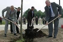 Při zahájení stavby silnice Běleč – Husinec byla slavnostně zasazena lípa. Práce se ujali také prachatický starosta Jan Bauer, hejtman Jihočeského kraje Jan Zahradník a jeho první náměstek Robin Schinko.