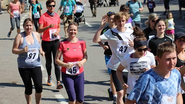 Běžci absolvovali 7. ročník Hospicové desítky v Prachaticích.