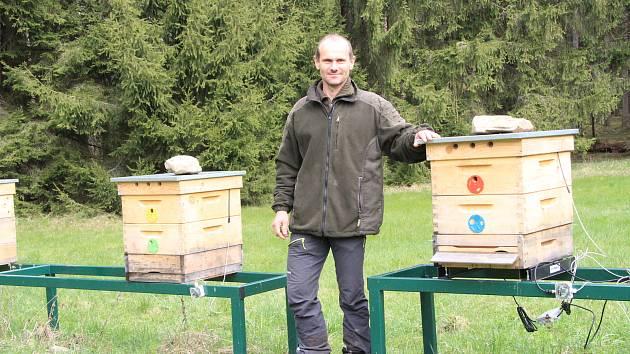 Vedoucí provozu Městských lesů Volary Miroslav Trost je zároveň včelař, a tak obhospodařuje také městský včelín, který lesy vloni postavily.
