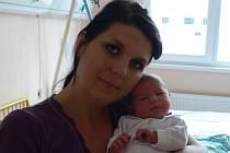 Vendula Menšíková se v prachatické porodnici narodila 6. 7. 2012 ve 12.33 hodin. Vážila 3420 gramů a měřila 51 centimetrů. Rodiče Stanislava a Václav Menšíkovi jsou z Volar. Doma netrpělivě čekali sourozenci Vašík, Jiřík, Dominik a Natálka.