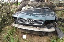 Těžká zranění utrpěl šofér audi, který narazil do stromu u Chluman.