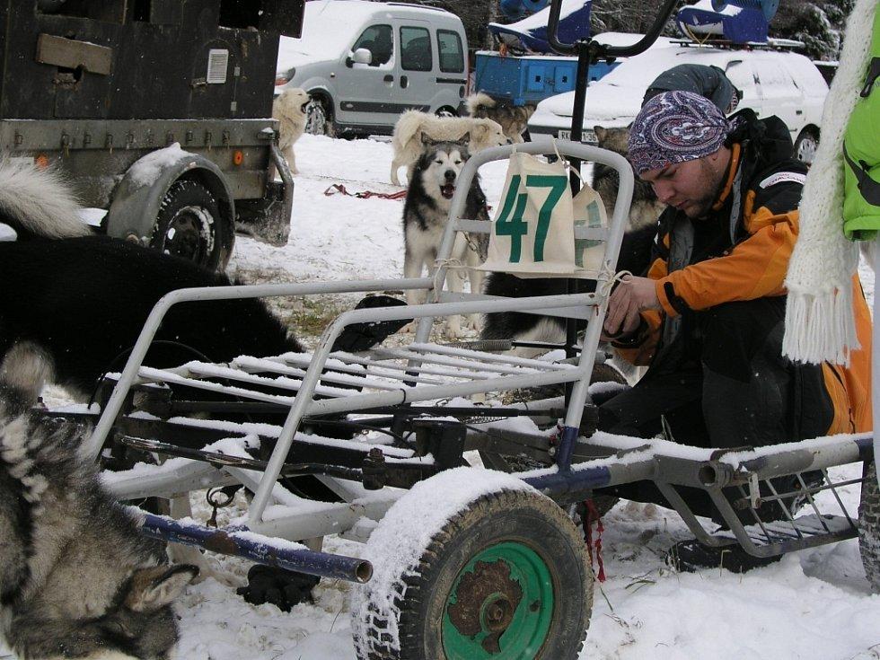 Soutěž psích spřežení v Kubově Huti.