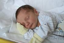 DAVID FRANZ, PRACHATICE. Narodil se v pondělí 17. června ve 13 hodin a 23 minut v prachatické porodnici. Vážil 3450 gramů. Má brášku Vašíka (2,5 roku).Rodiče: Eva a Václav Franzovi.