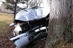 Ve voze s řidičem cestovali dalši tři lidé. Ti utrpěli lehká zranění.