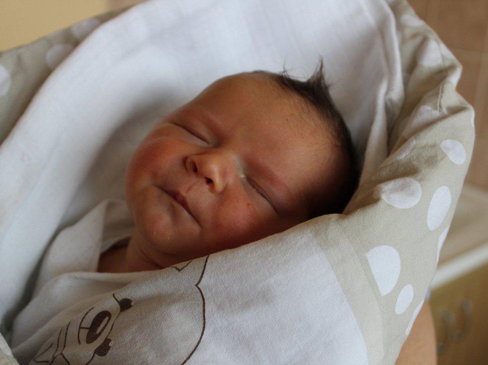 Tatínek Jan Kříž a maminka Markéta Pravdová z Prachatic mají radost z narození syna. Chlapeček dostal jméno Jan Pravda a narodil se v prachatické porodnici v pondělí 8. ledna 9:57 hodin. Sestřičky malému Honzíkovi navážily 3830 gramů.
