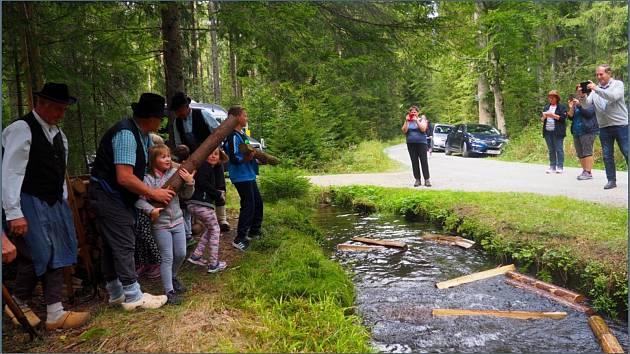 V sobotu 14. září se letos již osmé plavení dříví konalo v Rakousku u potoku Schrollenbach.