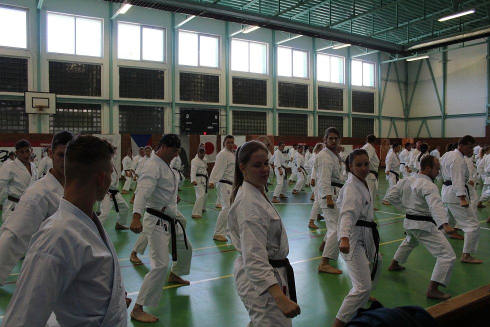 Gasshuku Czech je každoročně velkým sportovním svátkem.