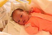 Ve středu 28. března ve 4 hodiny a 33 minut ráno se v prachatické porodnici narodila Lenka Morongová. Sestřičky jí navážily 3980 gramů. Manželé Lenka a Jindřich Morongovi žijí ve Volarech. Tam se na malou sestřičku těší bráška Jindříšek, který před dvěma